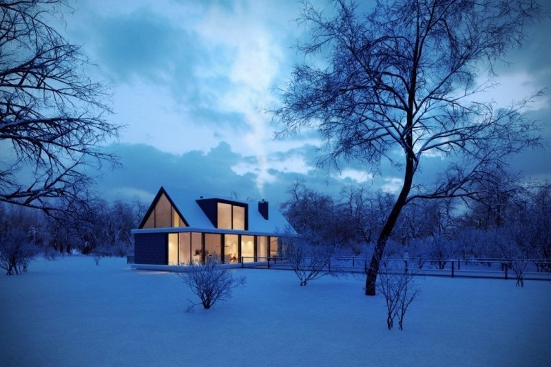 CG Visualization of a Cozy House in the Forest